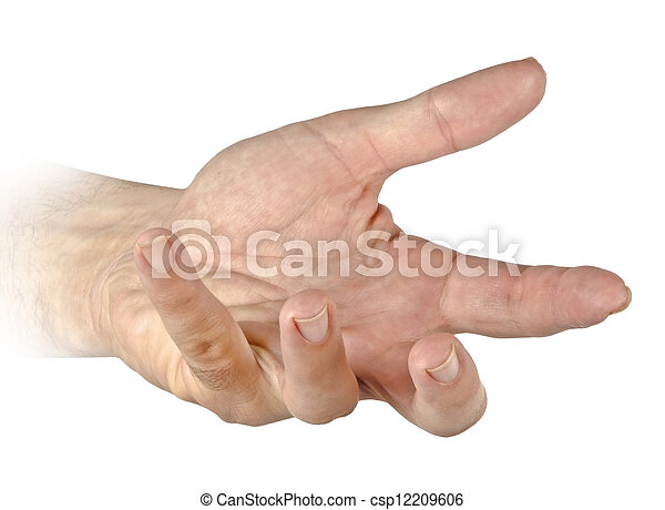 Hand isolated on white - csp12209606