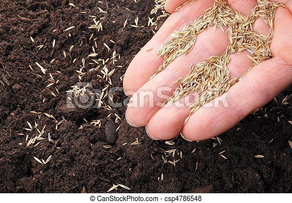hand sowing seed - csp4786548