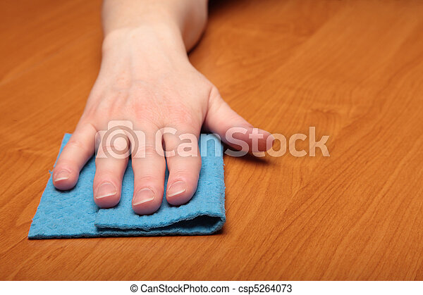 Hand with a cellulose sponge - csp5264073