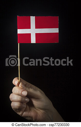Hand with flag of Denmark - csp77230330