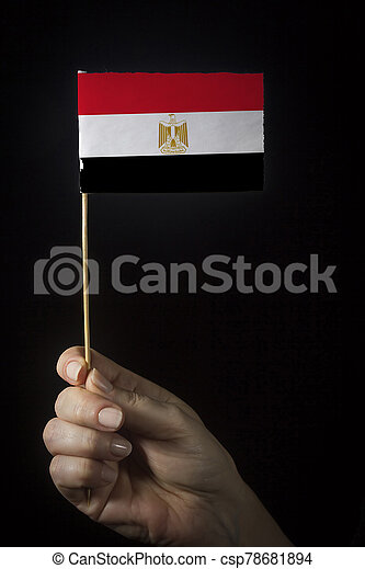 Hand with flag of Egypt - csp78681894