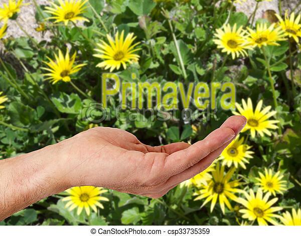 hand with flower background - csp33735359