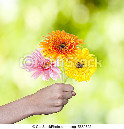 hand with flower bouquet - csp15682522