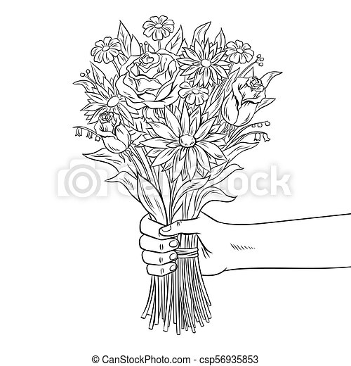 Hand With Flower Coloring Book Vector Illustration. Hand Holds Bouquet Of Flowers  Coloring Vector Illustration. Isolated CanStock