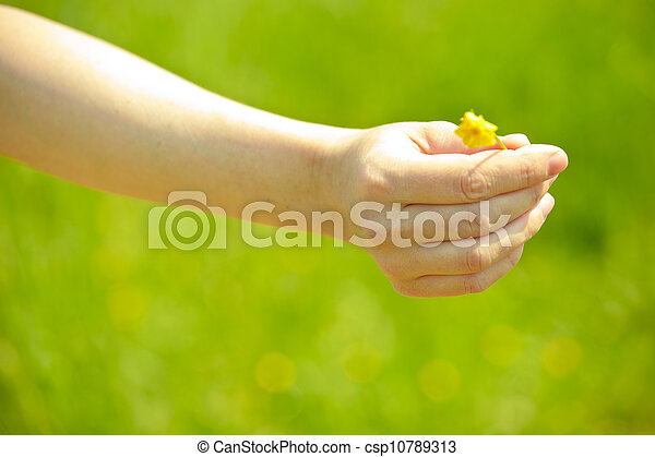 hand with flower - csp10789313