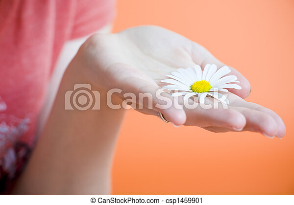 Hand with flower - csp1459901