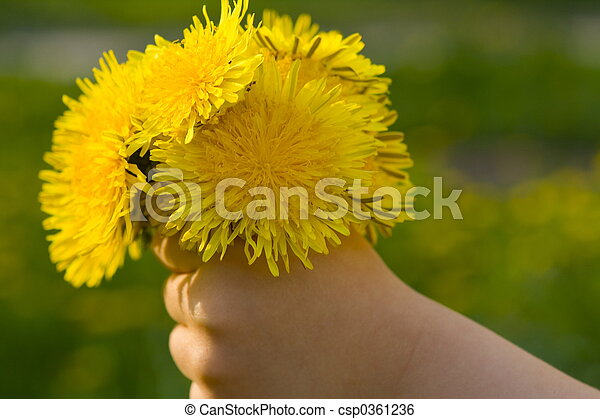 Hand with flower - csp0361236