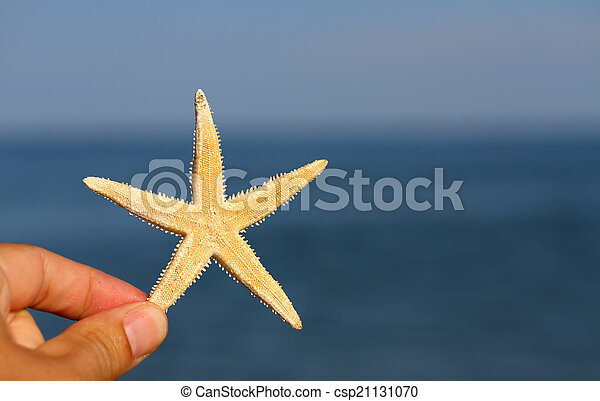 hand with the white starfish and sea in the background - csp21131070
