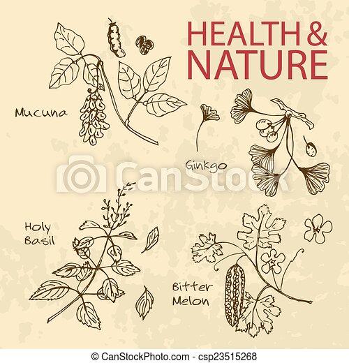 Handdrawn Illustration - Health and Nature Set - csp23515268