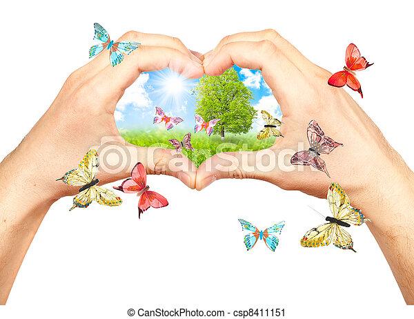 handen, details, menselijk, natuur - csp8411151