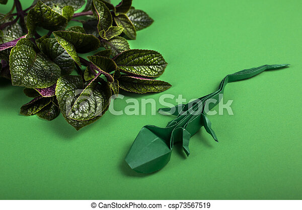 Green Origami Lizard On Green Background Stock Image - Image of ... | 320x450