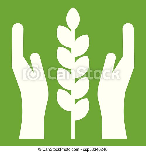 Hands and ear of wheat icon green - csp53346248