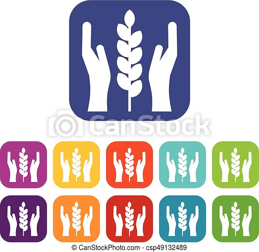 Hands and ear of wheat icons set - csp49132489