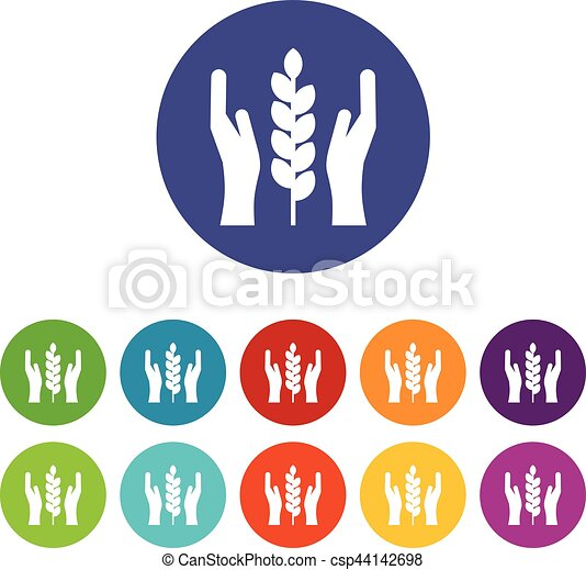 Hands and ear of wheat set icons - csp44142698