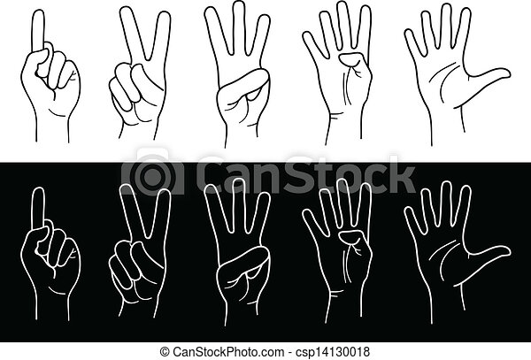 hands and fingers - csp14130018