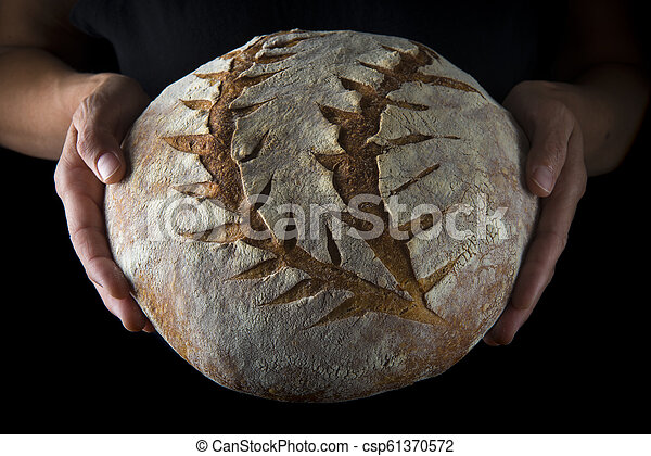 Hands holding a homemade loaf of bread - csp61370572