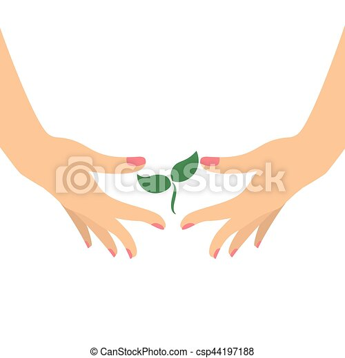 Hands holding green plant - csp44197188