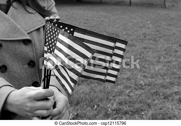 Hands holding waving flags - csp12115796
