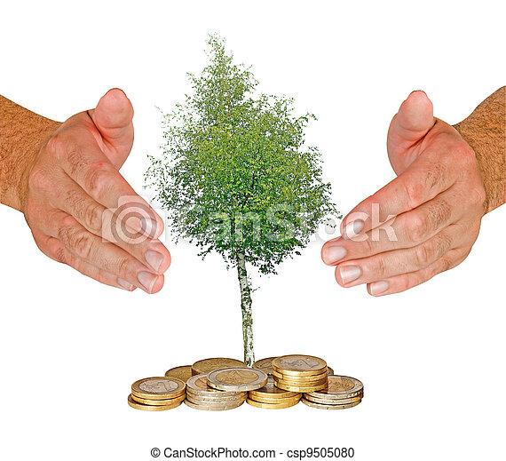 Hands protecting tree - csp9505080