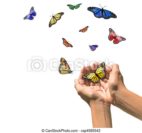 Hands Releasing Butterflies into Blank White Space - csp4585543