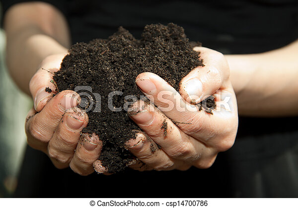 hands with soil - csp14700786