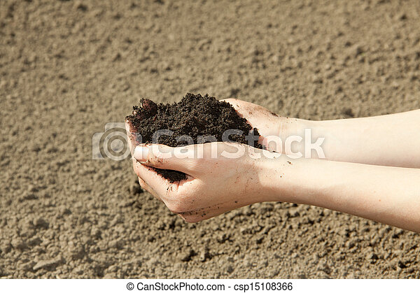 hands with soil - csp15108366