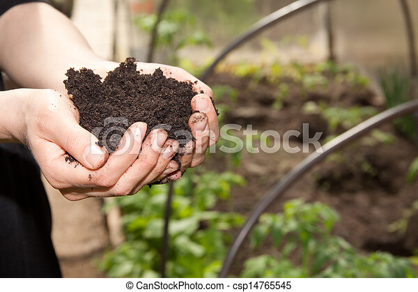 hands with soil - csp14765545