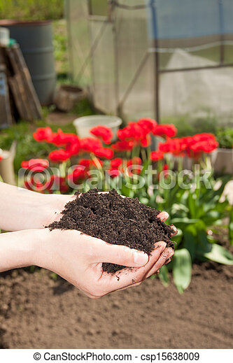 hands with soil - csp15638009