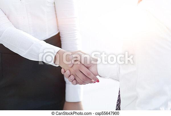 handshake business partners in the office. - csp55647900