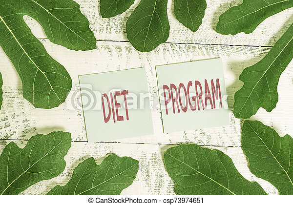 Handwriting text Diet Program. Concept meaning practice of eating food in a regulated and supervised fashion. - csp73974651