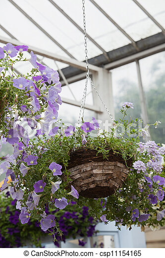 Hanging basket in garden center - csp11154165