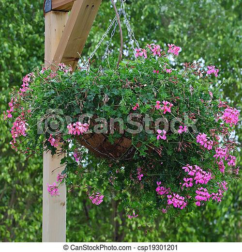 Hanging basket of flowers  - csp19301201