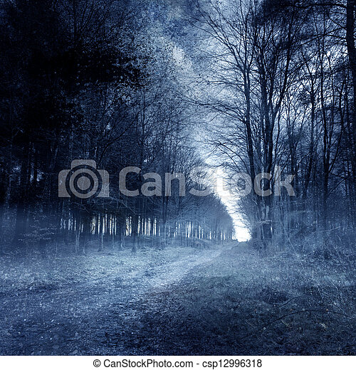 hanté, forêt - csp12996318