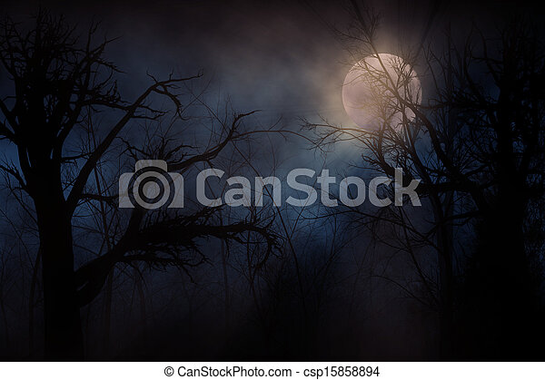 hanté, forêt - csp15858894