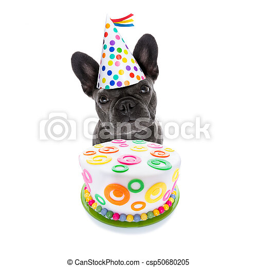 Awesome Happy Birthday Dog And Cake French Bulldog Dog Hungry For A Happy Funny Birthday Cards Online Overcheapnameinfo