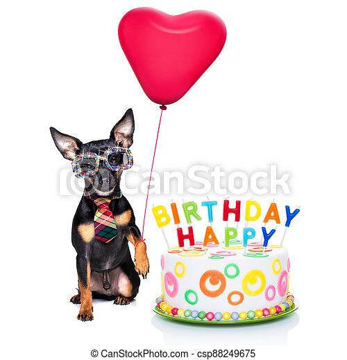 happy birthday dog - csp88249675
