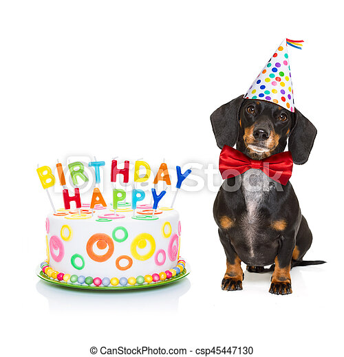 Happy Birthday Dog Dachshund Or Sausage Hungry For A