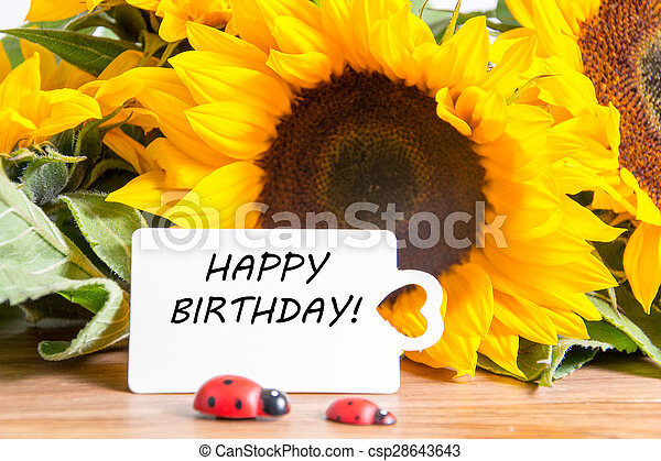 happy birthday - csp28643643