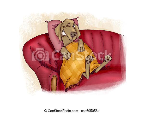happy dog on sofa - csp6050564