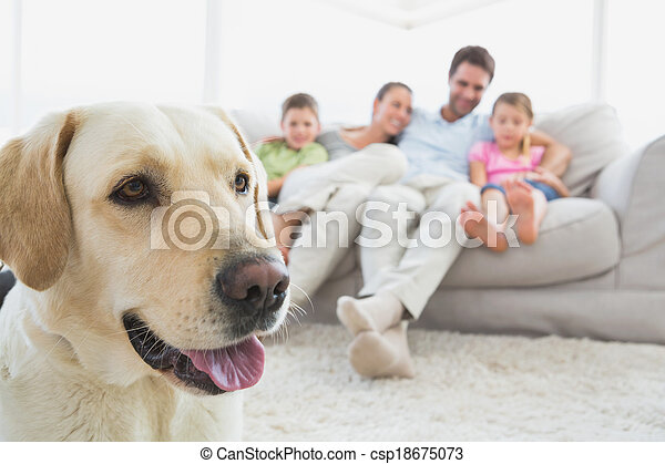 Happy family sitting on couch with their pet labrador in foreground at home in the living room - csp18675073
