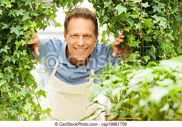 Happy Gardener Handsome Mature Man Looking Through Plants And
