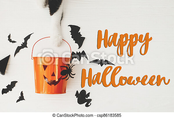 Happy Halloween text on cat paw holding Jack o lantern candy pail on white background with bats and spider decorations, top view. Trick or treat. Handwritten sign, seasonal greeting card - csp86183585