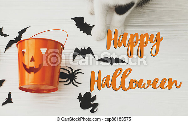 Happy Halloween text on cat paws holding Jack o lantern candy pail on white background with bats and spider decorations, top view. Trick or treat. Handwritten sign, seasonal greeting card - csp86183575