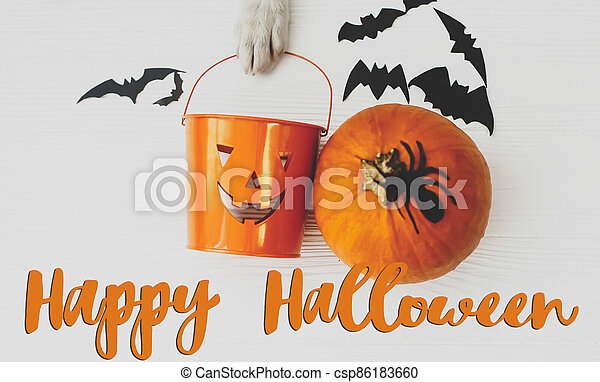 Happy Halloween text on puppy holding Jack o lantern candy pail on white background with pumpkin, bats and spider decorations, top view. Trick or treat. Handwritten sign, seasonal greeting card - csp86183660