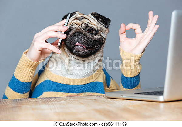 Happy man with pug dog head talking on cell phone  - csp36111139