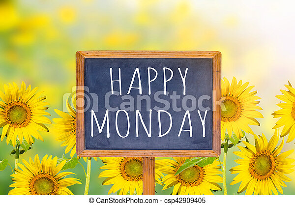 Happy Monday On Blackboard With Sunflower Background