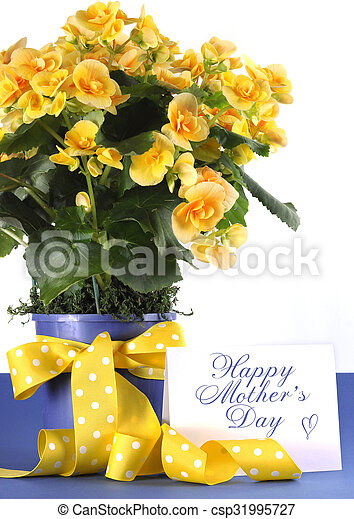 Happy mothers day beautiful yellow begonia potted plant gift with happy mothers day beautiful yellow begonia potted plant gift with yellow flowers and polka dot gift wrapping ribbon and gift card tag mightylinksfo