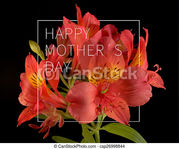 Happy Mothers Day Flower Background