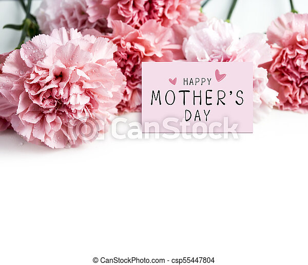 Happy mothers day message on paper and pink carnation flower on happy mothers day message on paper and pink carnation flower on white background csp55447804 mightylinksfo