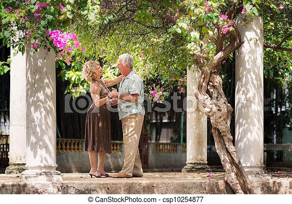 Happy senior couple dancing latin american dance for fun - csp10254877